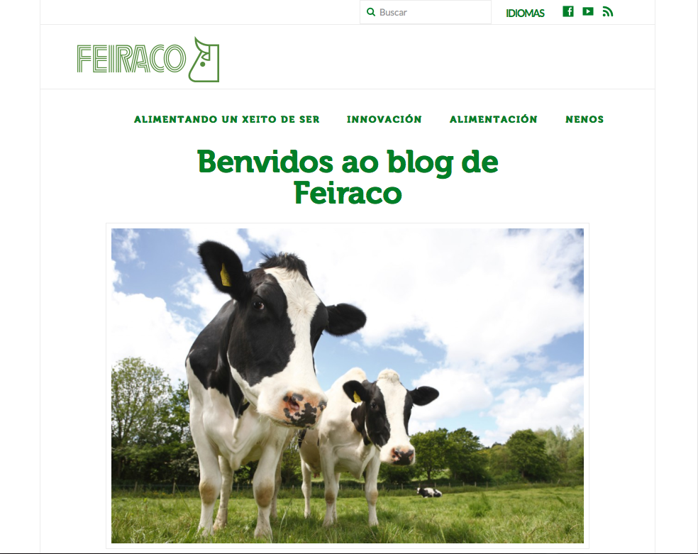 blog feiraco