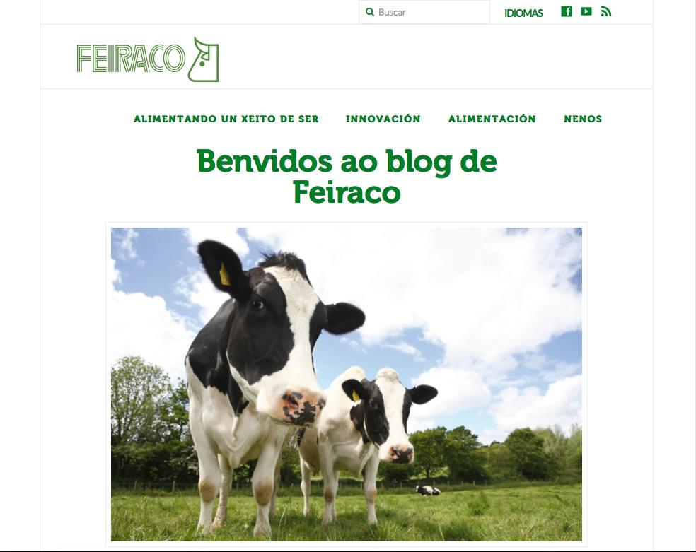blog feiraco