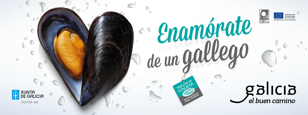 Mejillón de Galicia
