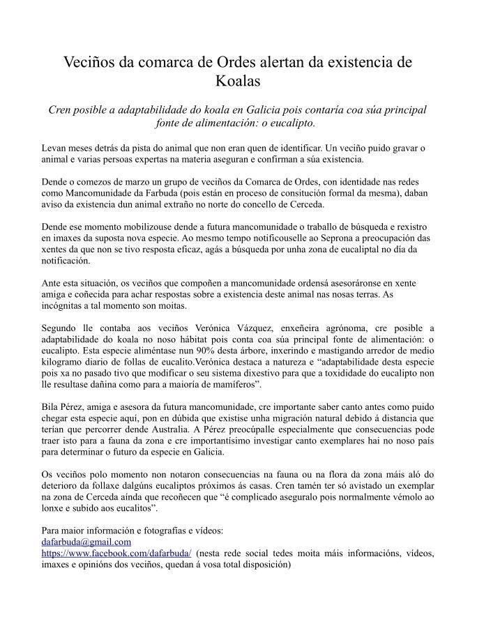nota de prensa koalas