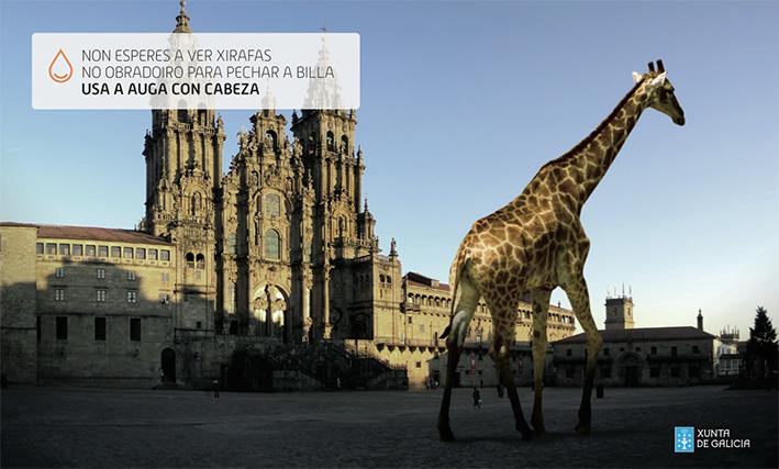 agua_xunta_jirafa