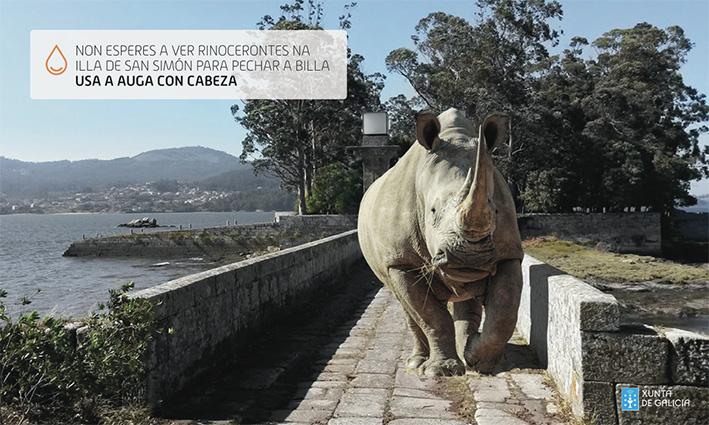 agua_xunta_rinoceronte